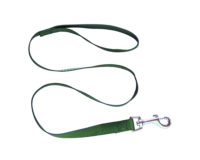 Clip Lead - 20mm polyweb nylon, 100cm, blue or green